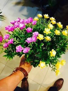 High Quality of Artificial Flowers Bush of Gu-Jy902120512 pictures & photos