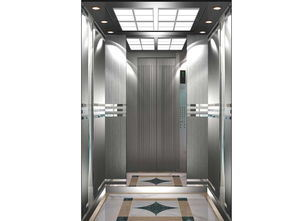 Vvvf Home and Passenger Lift Without Machine Room