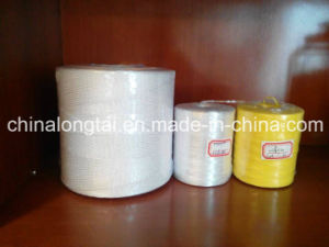 China Manufacture Hay Baler Twine pictures & photos