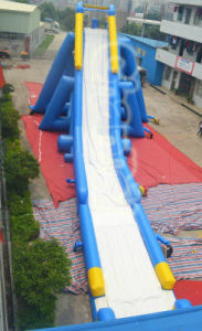 Hippo Inflatable Water Slide for Water Games (CHSL312) pictures & photos