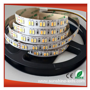 SMD5630 High Lumen Ww3000k+Pw6000k Dual Color CCT Adjustable LED Strip pictures & photos
