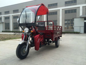 Cargo Rickshaw pictures & photos