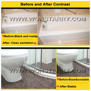 Wonstar High Grade Stainless Steel Silicone Sealant pictures & photos