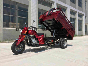 3 Wheel Motorcycle for 1 Ton pictures & photos