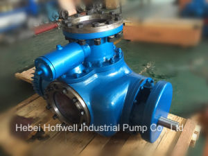 CE Approved W. V Bonemann Twin Screw Pump pictures & photos