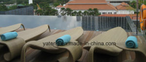 New Style Outdoor Hotel Furniture Sun Lounge Pool Side Sumbed Beach Furniture Lounge (YTF418-1) as Single &Double Lounge pictures & photos