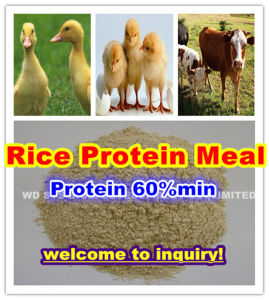 Rice Protein Meal with Competitive Price for Animal Feed pictures & photos