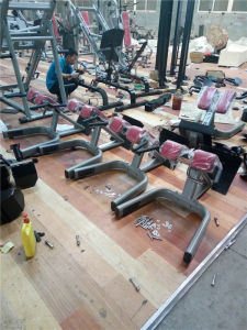 Fitness Equipment/ Gym Equipment / 45 Degree Back Extension (SM29) pictures & photos