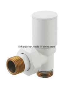 High Quality Radiator Valve Angle (NR-3029) pictures & photos