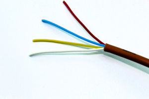 Multi - Core Teflon Insulated Wire pictures & photos