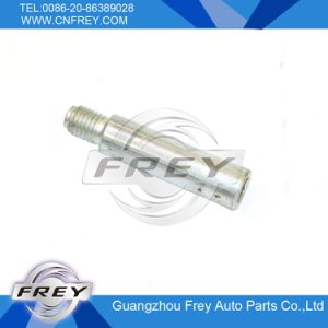 Sprinter Brake Caliper Pins OEM. No. 0004210818 for Mercedes Benz pictures & photos