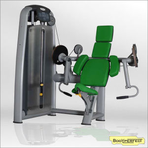 Professional Gym Club Equipment Biceps Curl (BFT-2003) pictures & photos