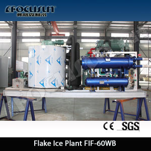 High Efficient Salt Water Flake Ice Maker pictures & photos