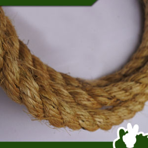 16mm 3ply Sisal Rope Packing Rope