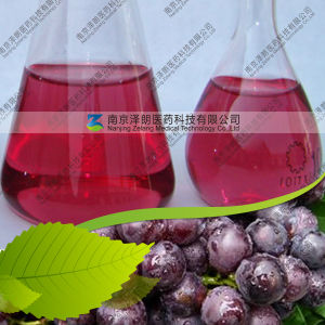 Manufacturer Supply Water Soluble Grape Skin Red Color pictures & photos