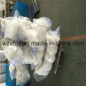 "0.9mmx7""X80ydsx70md Nylon Monofilament Fishing Net pictures & photos"