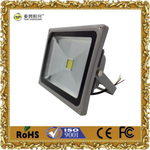 30W COB Floodlight LED Flood Light