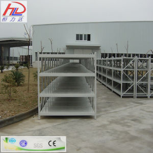 Heavy Duty Ce Approved Adjustable Storage Shelf pictures & photos