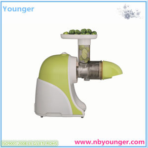 Slow Juicer pictures & photos
