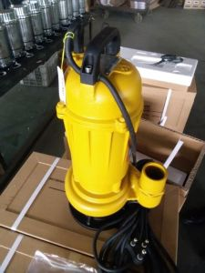Popular Good Quality Sewage Pump with CE Certificate pictures & photos