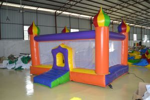 Inflatable Combo Bouncing Castles (CL-024) pictures & photos