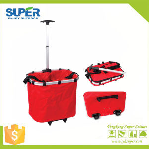 Shopping Trolley Bag with Wheels (SP-325) pictures & photos