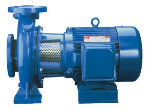 Horizontal End-Suction Centrifugal Pump (IS) pictures & photos