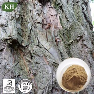 High Quality White Willow Bark Extract (Salicin 15%, 98%) pictures & photos