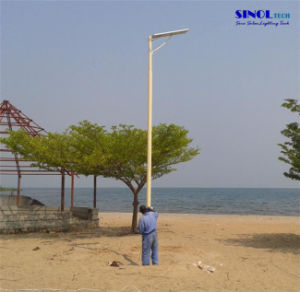 All in One 30W LED Solar Street Light for 7-8m Pole with Lithium Ion Battery Included (SNSTY-230) pictures & photos