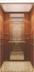 Champagne Golden Villa Elevator Passenger pictures & photos