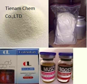 Testosterone Cypionate, Testosterone Decanoate, Testosterone Enanthate pictures & photos