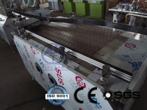 Automatic Aerosol Can Feeding Machine (QGQ) pictures & photos