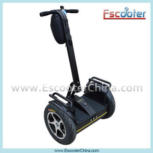 Ecorider 2-Wheel Mini Self-Balancing Electric Chariot Scooter pictures & photos