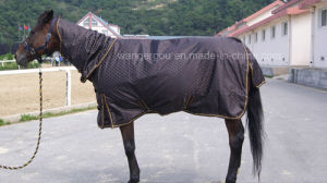 Turnout Combo, Horse Rug, Horse, Horse Product, Horse Riding (CB-N1) pictures & photos