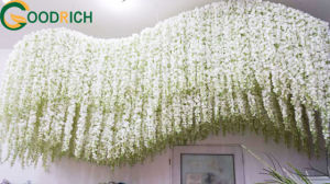 Wisteria for Wedding and Christmas Decoration pictures & photos