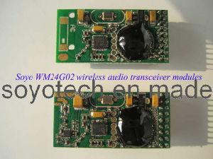 2.4GHz Digital Wireless Audio Module pictures & photos