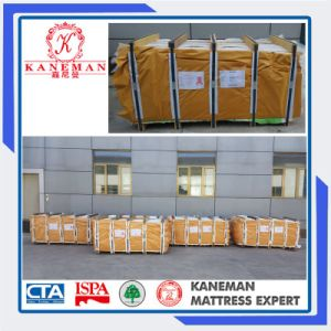 Alibaba Wholesale Price School Dormitory Single Spring Mattress pictures & photos