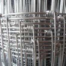 Sheep Wire Mesh Fence & Wire Mesh Cattle Fence& Hot DIP Galvanized Deer Wire Mesh Fence pictures & photos