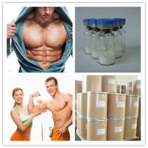 High Quality Sarms Ostarine/Mk-2866 Powder Uses on Lean Mass Gains pictures & photos