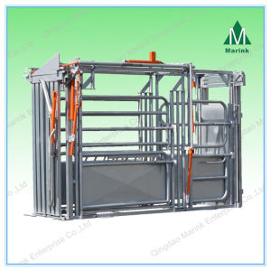 Galvanized or Powder Coated Cattle Weighing Scale pictures & photos