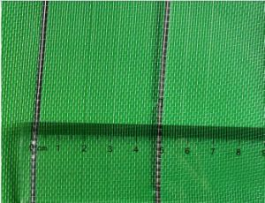 Professional Anti Insect Net for Agriculture Use pictures & photos