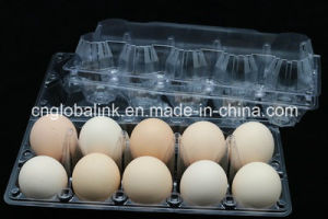 Disposable Pet Plastic Eggs Tray 10 Holes pictures & photos