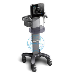 Touch Screen Pad Ultrasound (SonoPad) pictures & photos
