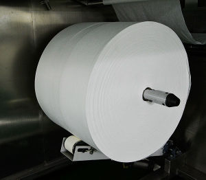 Parallel Lapping Spunlace Non Woven Fabric pictures & photos