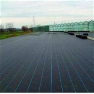 Paupular Landscape Ground Cover/Geotextile Ground Fabric/Weed Guard Fabric pictures & photos