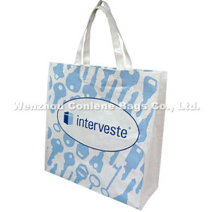 Wholesale Nonwoven Shopping Bags, Bottle Shopping Bag, China PP Woven Bag