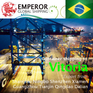 Sea Freight Shipping From China to Vitoria, Brazil Brasil