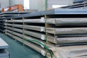 Stainless Steel Sheet F53 F51 pictures & photos