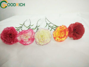 Silk Carnation Flower for Decoration pictures & photos