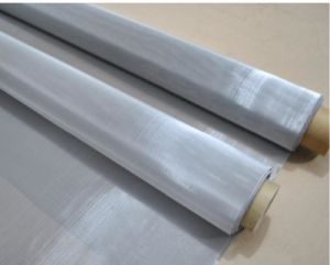 Stainless Steel Wire Mesh in 304L Material pictures & photos